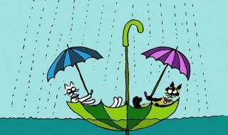 店休日 Rainy