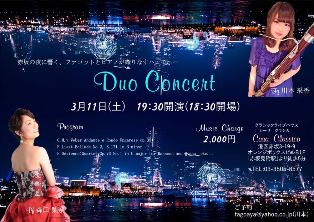 200170311夜flyer
