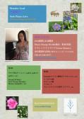 夜の部 WONDER LEAF 上村優子Piano Solo Live 上村優子(ピアノ)■予約受付終了■