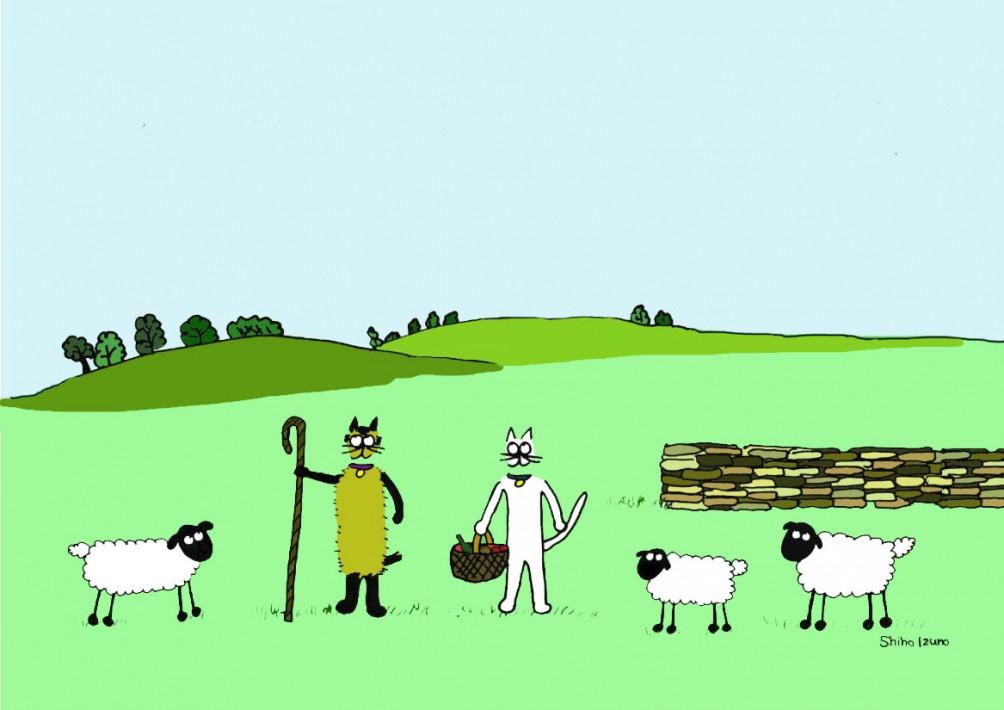 sheepandthefield-2020